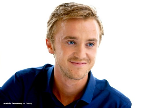 Tom Felton wallpaper probably containing a portrait entitled Tom Felton Wallpaper