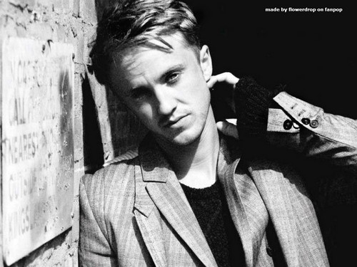 Tom Felton wallpaper probably with a sign entitled Tom Felton Wallpaper