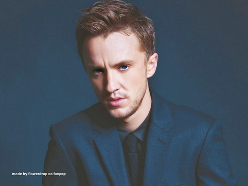 Tom Felton wallpaper probably containing a business suit, a suit, and a well dressed person entitled Tom Felton wallpaper