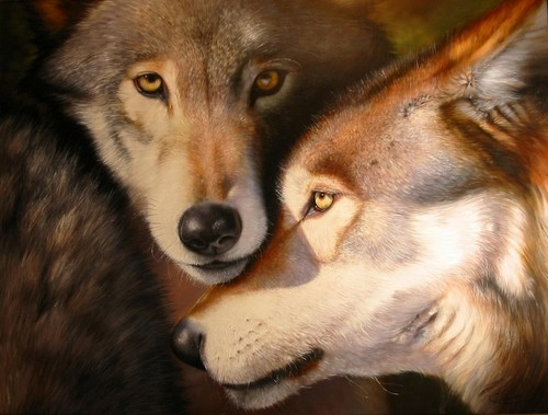 Two lobos