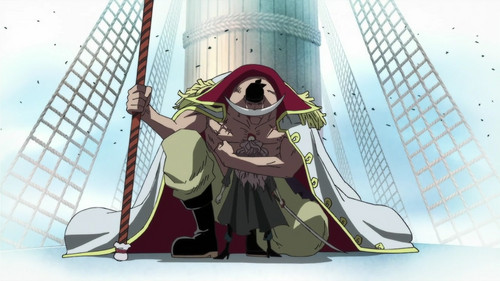 Whitebeard to the betrayer Squardo