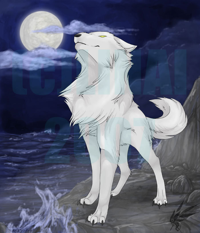 Wolfs on Pinterest | Wolves, Anime Wolf and White Wolves
