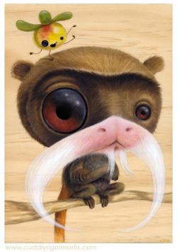 baby mustache monkey