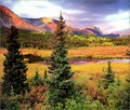 beautiful nature pics