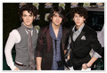 jonas - the-jonas-brothers photo