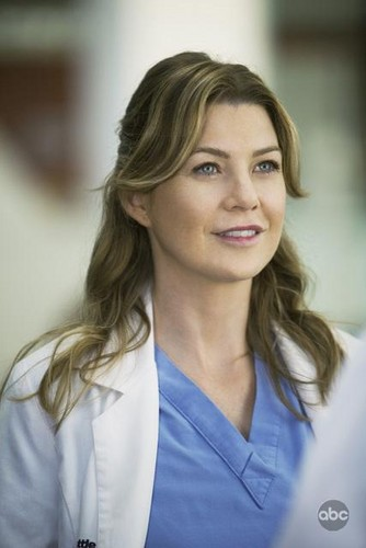 Meredith Grey 壁紙 with a portrait called meredith