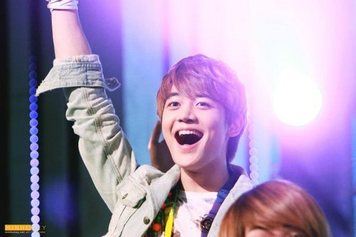 minho collection 2012