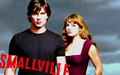 smallville wallpapers