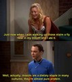 tbbt quotes - the-big-bang-theory photo