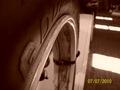 tire - photography photo
