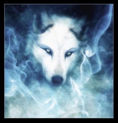 lobo spirit