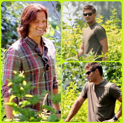 ☆ Jared & Jensen ★