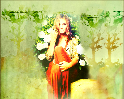 Castle wallpaper containing a dinner dress called ♥ Stana Katic ♥
