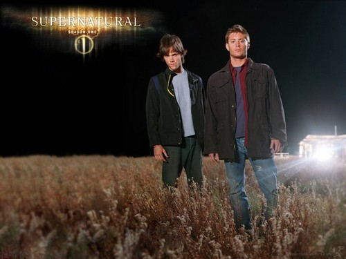 Rakshasa & Những người bạn hình nền with a grainfield and a business suit called ♥ Supernatural ♥