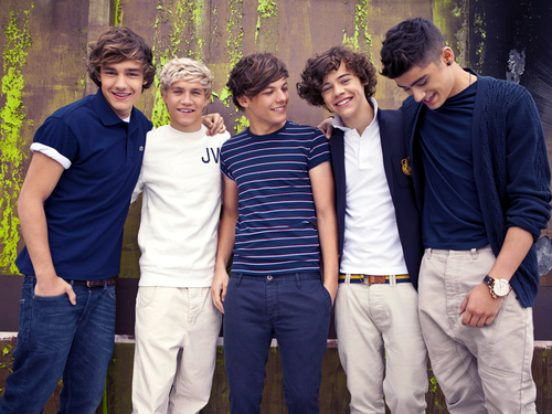 1D wallpapers!! - one-direction Wallpaper