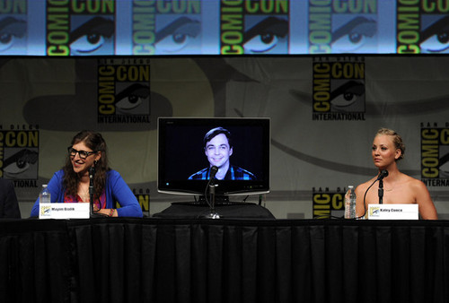 The Big Bang Theory wallpaper possibly with a pianist and a concert entitled 2012 Comic-Con - Panel