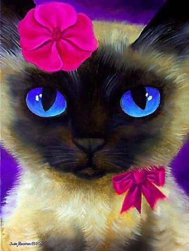 A BEAUTIFUL KITTY FOR DEAR BERNI~ - yorkshire_rose Photo