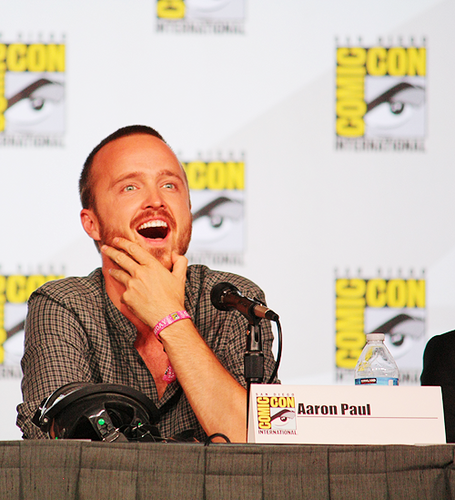 Aaron Paul Comic Con 2012