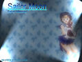 Ami and Luna - sailor-mercury wallpaper
