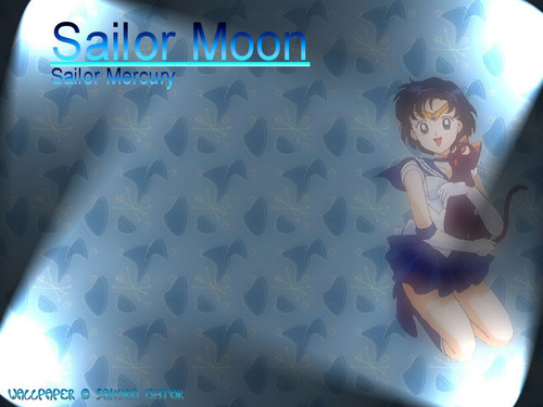 Sailor Mercury wallpaper possibly containing a sign titled Ami and Luna