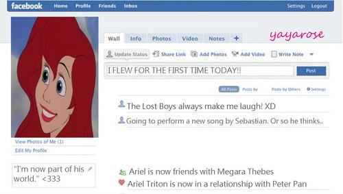 Ariel's Facebook profilo