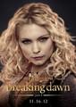 BD2 - twilight-series photo