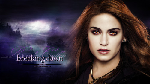 Breaking Dawn part 1&2 Hintergrund