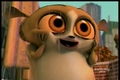 CUTE MORT! - penguins-of-madagascar photo