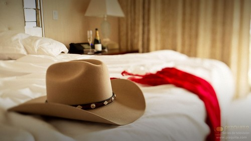 Dallas Tv Show wallpaper with a snap brim hat, a campaign hat, and a castor entitled Dallas (2012)