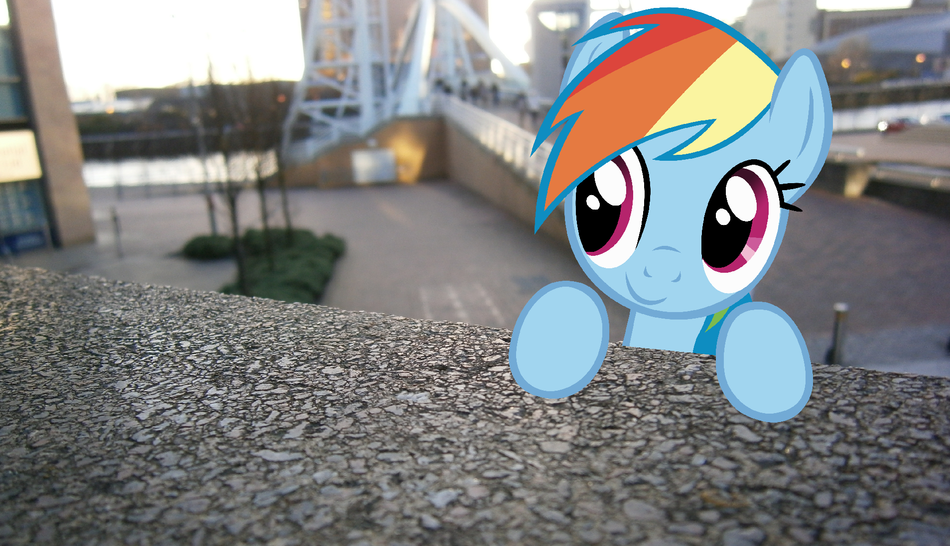 [Image: Dashie-in-real-life-my-little-pony-frien...7-1097.png]