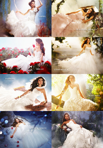 Disney Princess Inspired Wedding Gowns par Alfred Angelo