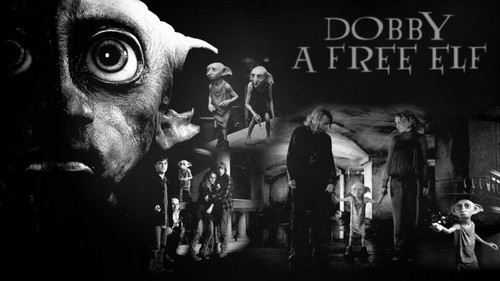 Harry potter images dobby a free elf wallpaper and background harry potter wallpaper probably containing a concert entitled dobby a free elf voltagebd Image collections