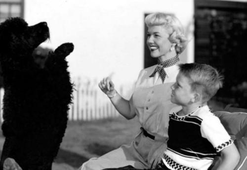 Doris 日 & son Terry