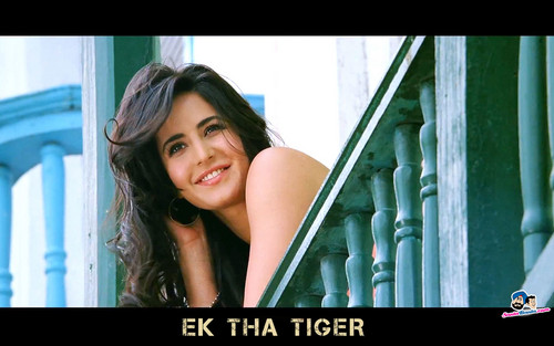 Katrina Kaif wallpaper possibly containing a sign and a portrait entitled Ek Tha Tiger