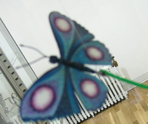 schmetterling ^-^