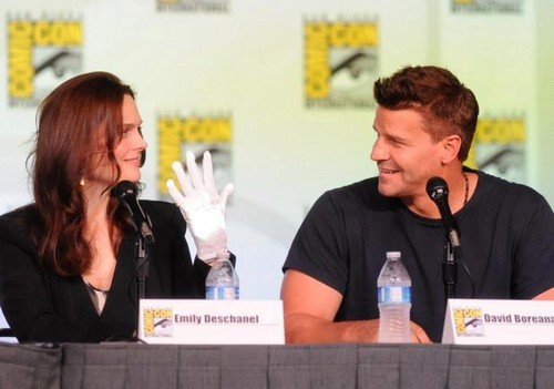 Emily Deschanel fond d'écran entitled Emily with David Boreanaz at Comic Con 2012