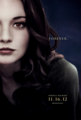 Fan Made Posters - twilight-series photo