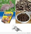 Funny - cereal-guy photo