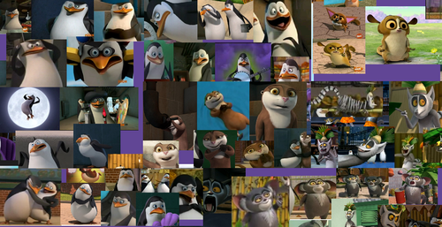 Good Times with PoM! - penguins-of-madagascar Photo