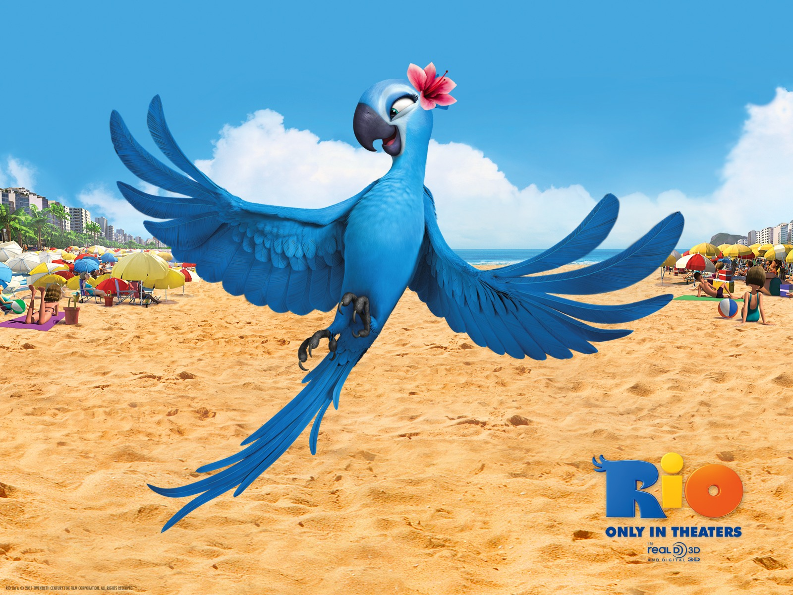 rio (the movie) images jewel from rio hd wallpaper and background