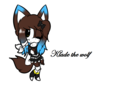 Klade the wolf - girl-sonic-fan-characters photo