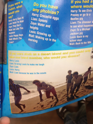 Louis and Harry choose each other to be stranded on an island with