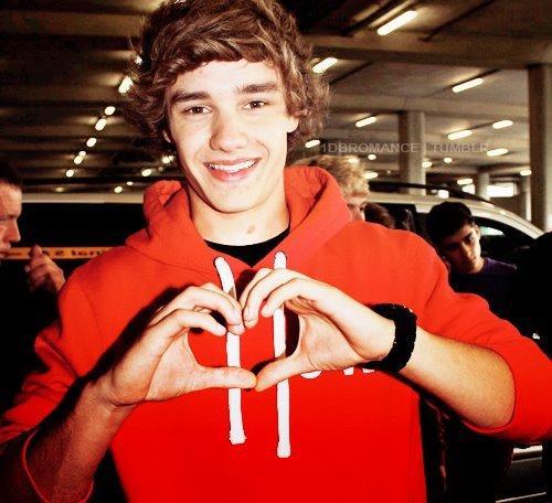 Love u guys 1D
