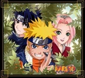 Naruto - naruto-shippuuden photo