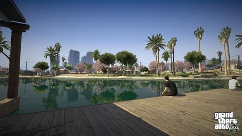 Grand Theft Auto V Images Gta V Screenshot Park Hd Wallpaper And