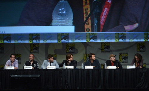 Panel at Comic-Con International 2012 - July 15th 2012