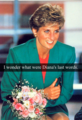 Princess Diana (What do you think?)