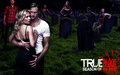 Promo - true-blood photo