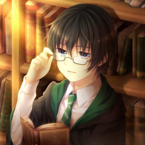 Harry Potter Anime wallpaper entitled Regulus Black