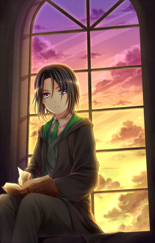 animé Harry Potter fond d'écran probably containing a well dressed person, an outerwear, and a sign titled Severus Snape